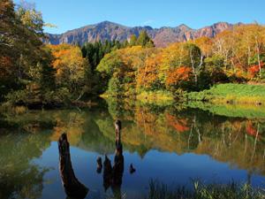 紅葉が美しい秋山郷の天池(栄村提供)