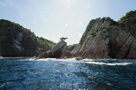 迫力あふれる断崖美は、約40分間の島めぐり遊覧船で
