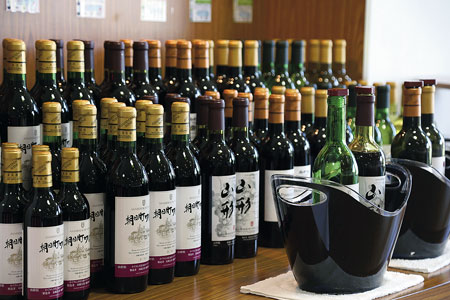 ワイン城では40種のワインを飲み比べられる