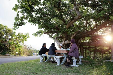 """シムクガマから歩いてすぐのガジュマルの樹の下で""""ゆんたく""""するおばぁたち"""