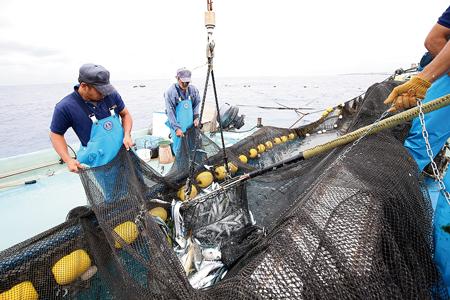 定置網漁の見学と体験は、夏場は予約でいっぱいになるほど人気