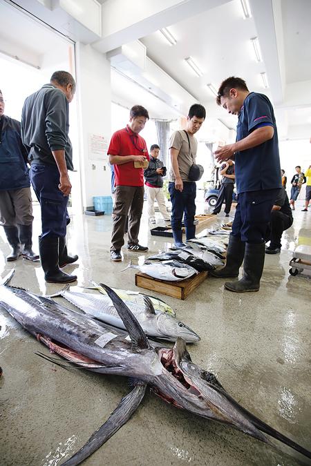 都屋漁港では競りの様子も見学できる