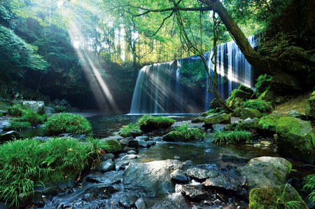 木々の隙間から差し込む光が美しい「鍋ヶ滝」(小国町提供)